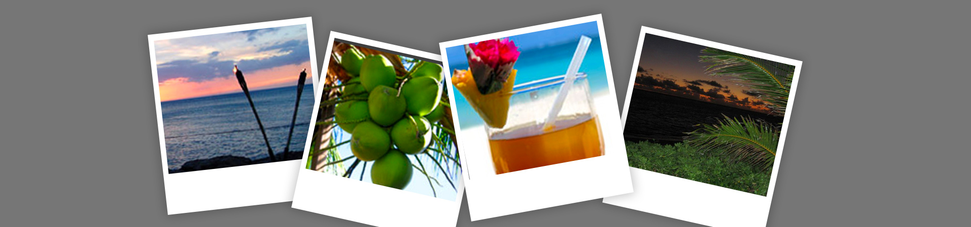Collage of Sea View, Coconut Tree as well as Mocktail